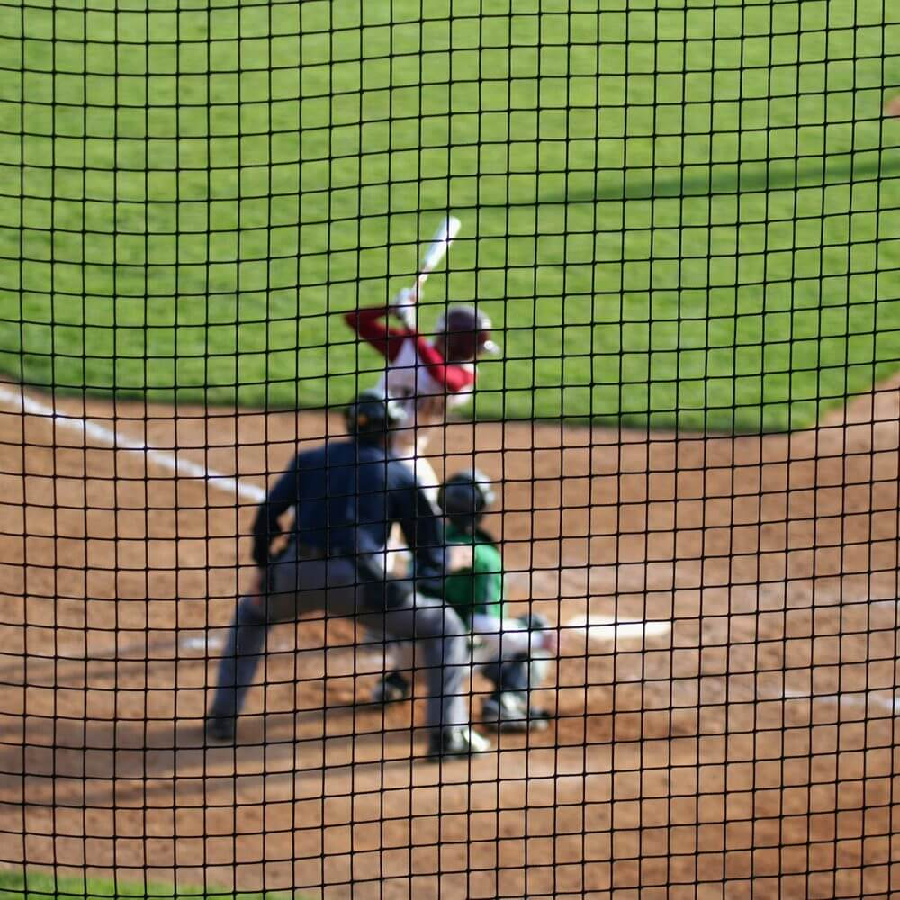 Baseball hitter waits for the next pitch - with catcher and umpire set for action. Deliberate shallow depth of field with players blurred beyond a protective net screen.
